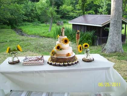 Outdoor Wedding Venues Near St Louis Mo Vincent S Lodge At The Dragonfly In Bb